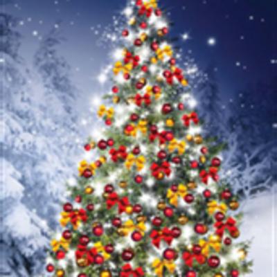 Vendredi 14 décembre - Arbre de Noël