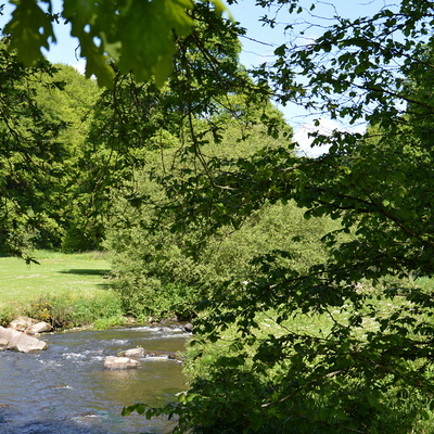 Vidéo de l''entretien des cours d''eau par l''AAPPMA de Plouguenast - Gausson