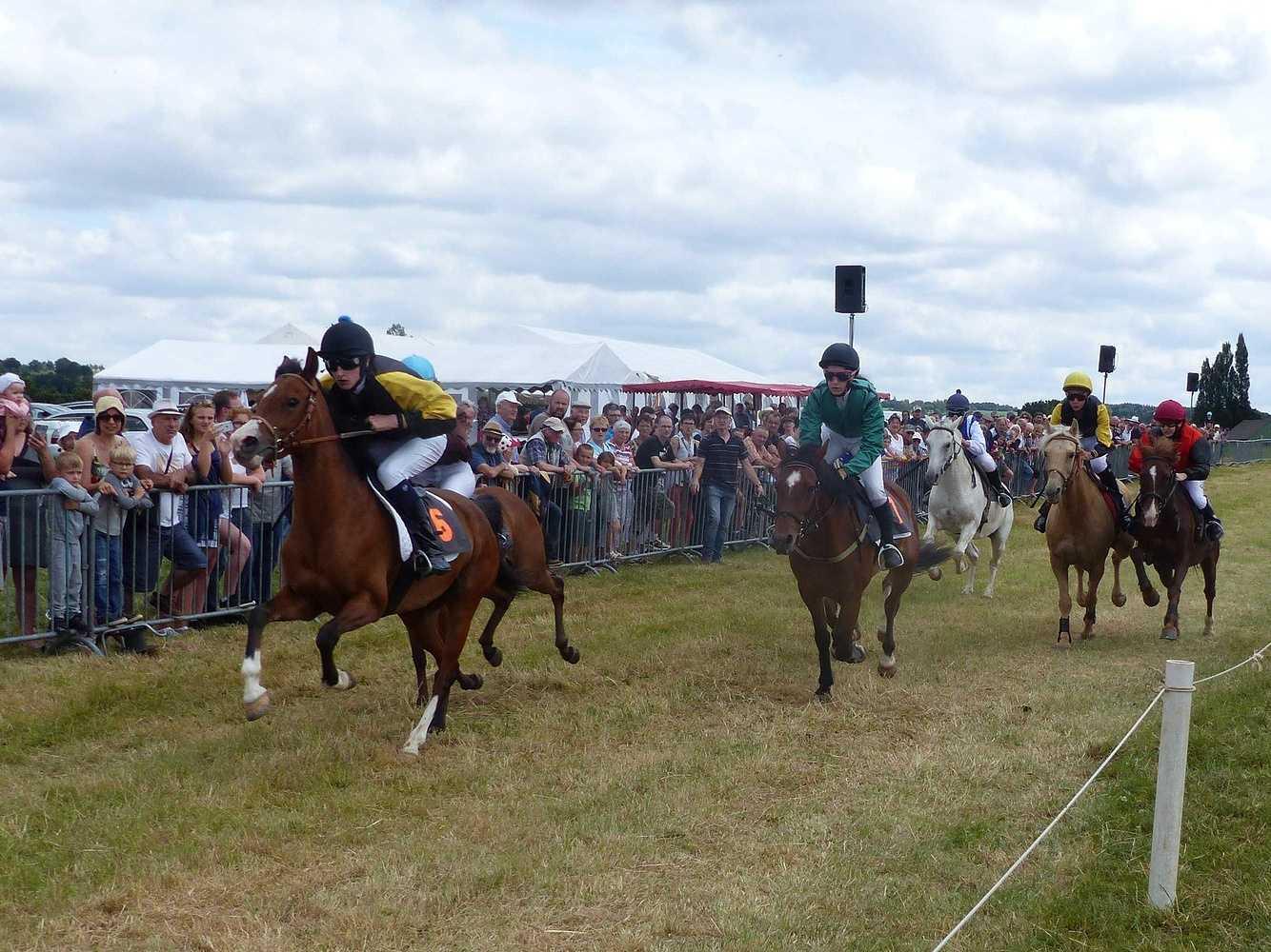 Photos des courses de poneys p1100737002