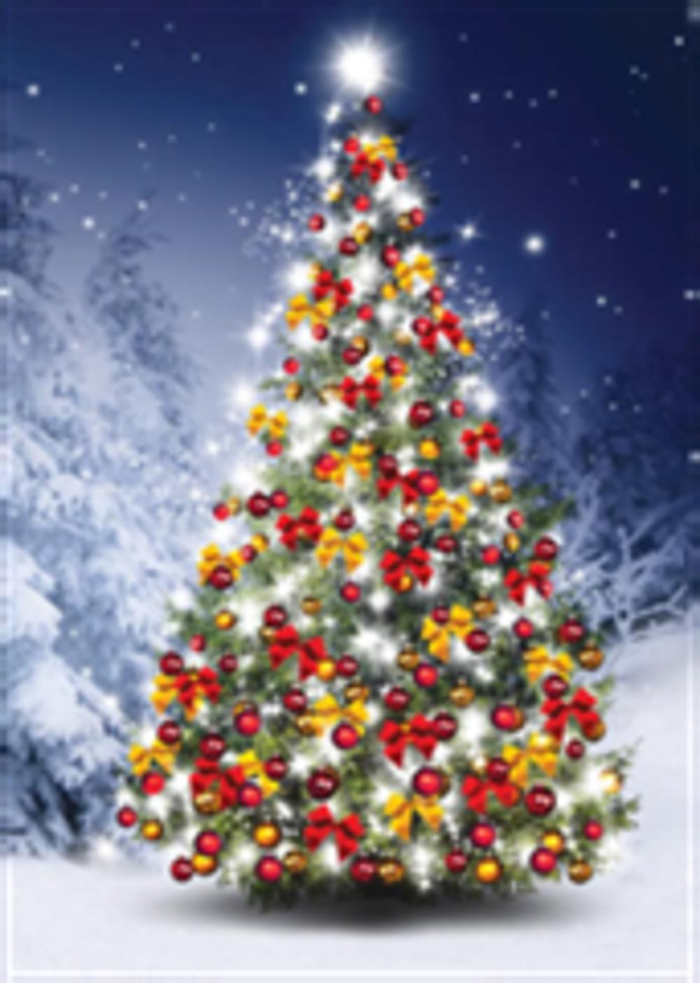 Vendredi 14 décembre - Arbre de Noël 0