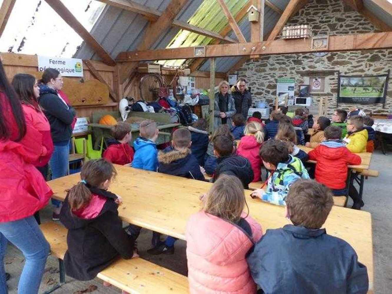 Photos de la visite de la ferme pédagogique de Saint-Fiacre image2