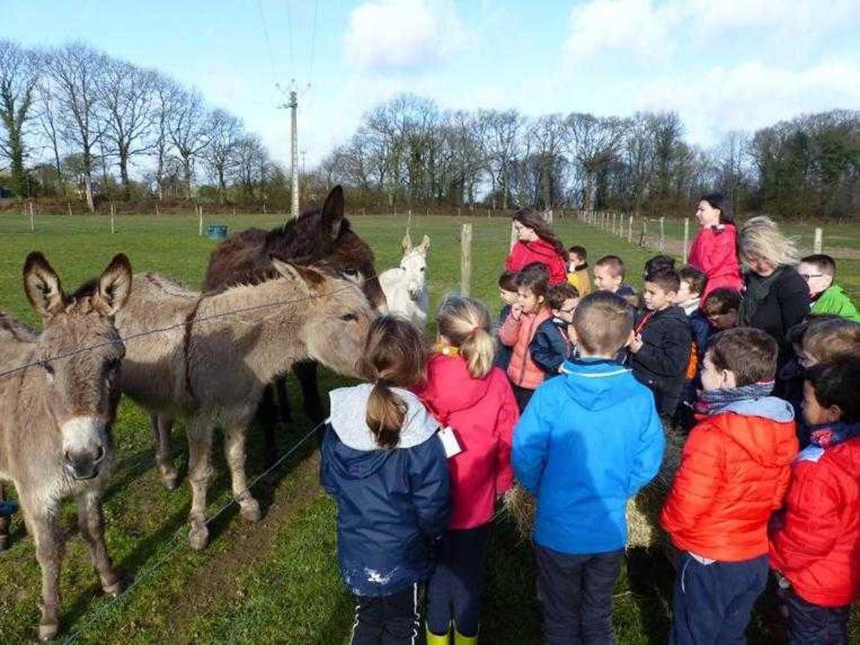 Photos de la visite de la ferme pédagogique de Saint-Fiacre image4