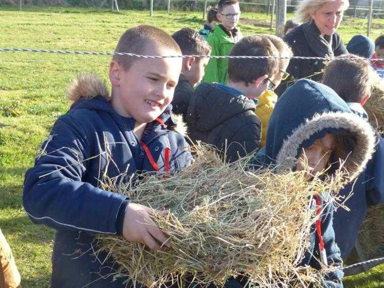 Photos de la visite de la ferme pédagogique de Saint-Fiacre image5