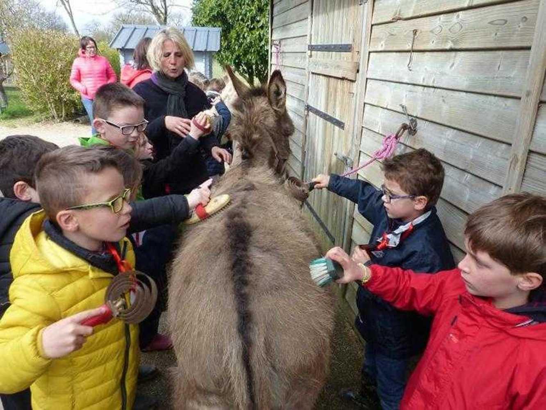 Photos de la visite de la ferme pédagogique de Saint-Fiacre image9