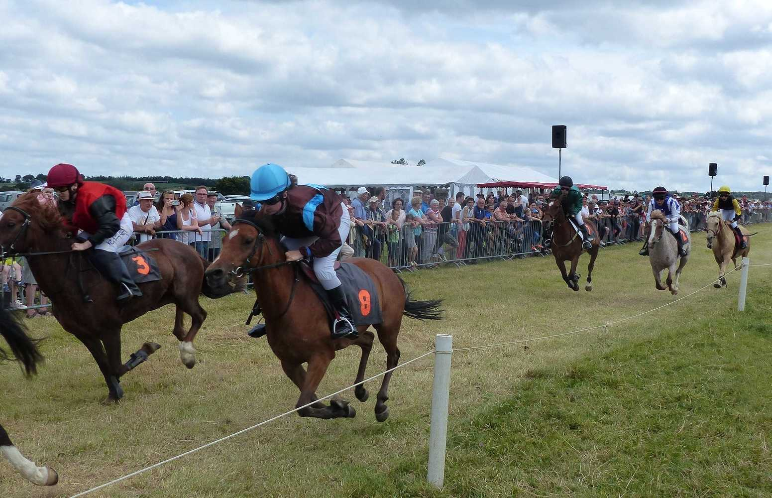Photos des courses de poneys p1100739002