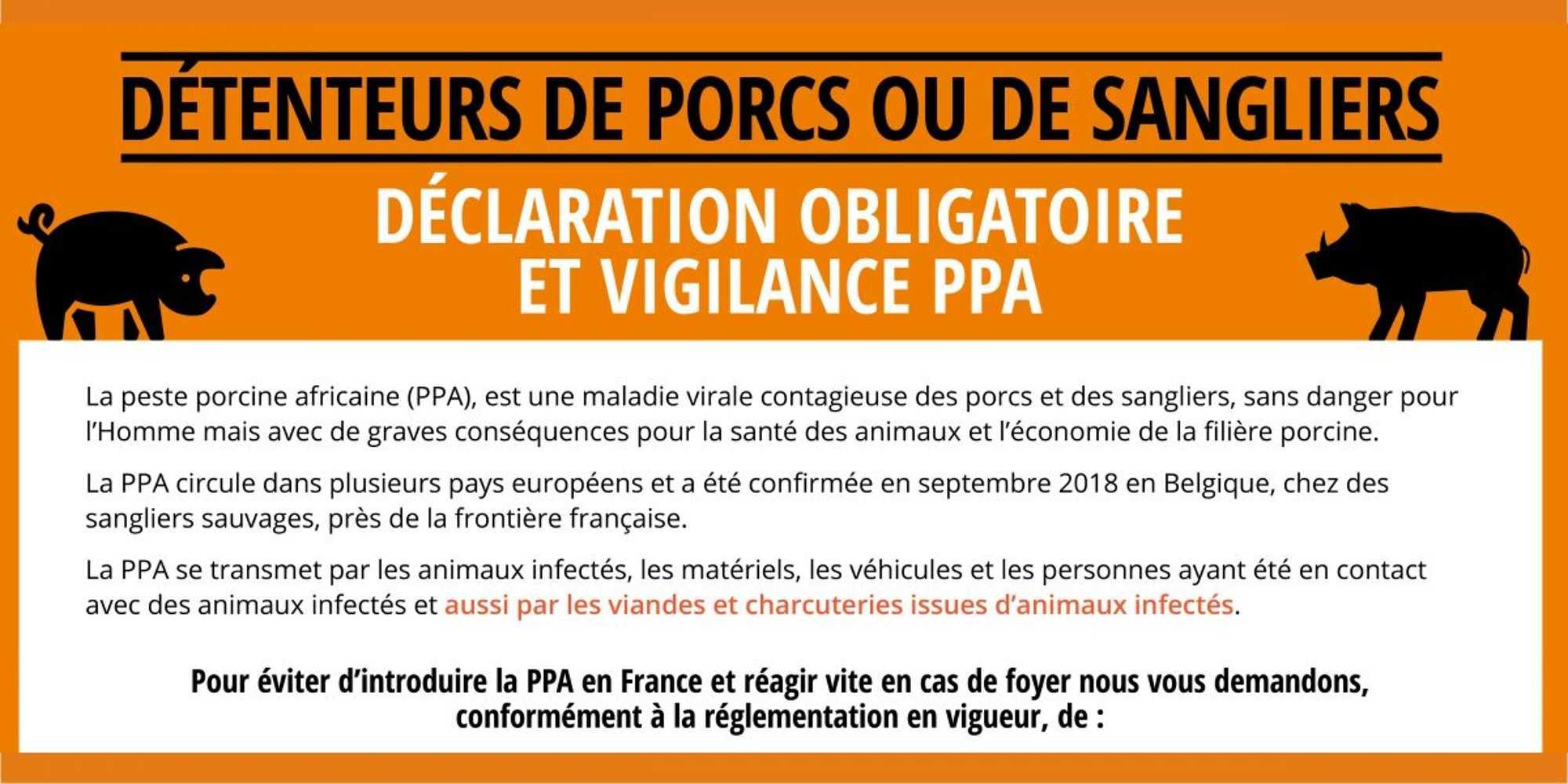 Vigilance Peste Porcine Africaine (PPA) 0