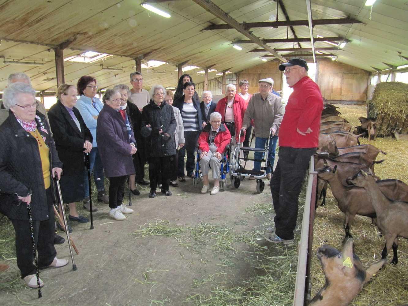 Les Amis de Kermaria - Sortie à la chèvrerie de Plouguenast - Octobre 2017 0