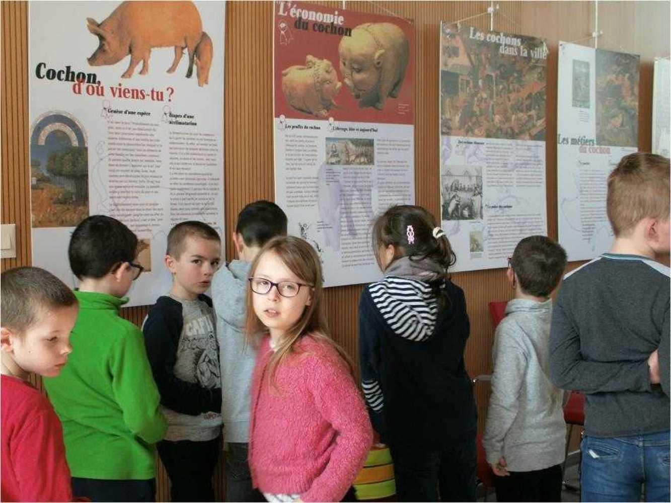"""Bibliothèque : visite de l''exposition """"Le Cochon dans tous ses états"""" image7"""
