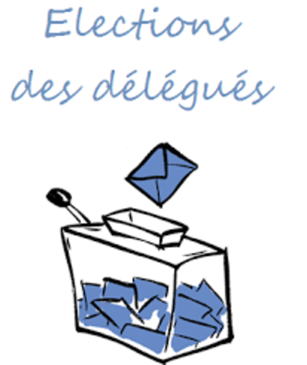 L''élection des délégués 0