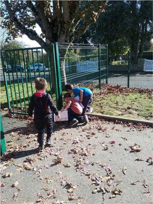 ALSH : photos des vacances d''automne 2018 image3
